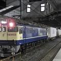 EF65 2081牽引4073レ小山11番待避中