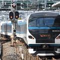 Photos: E257系2000番台回送踊り子号表示