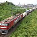 Photos: 金太郎42号機牽引3054レ