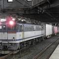Photos: EF65 2075牽引4073レ小山11番待避