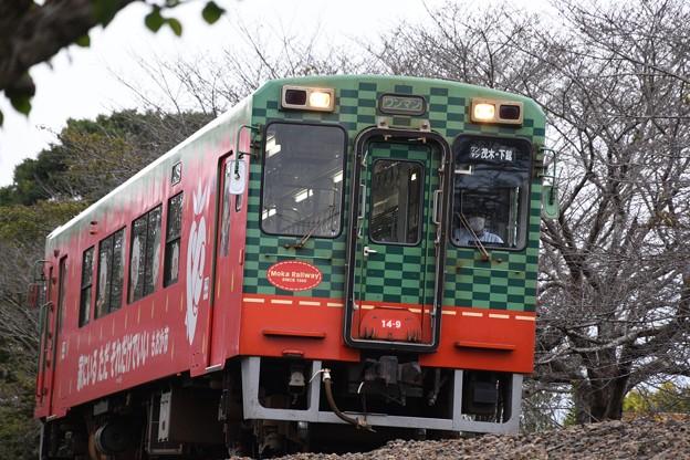 真岡鐡道モオカ14形茂木行き