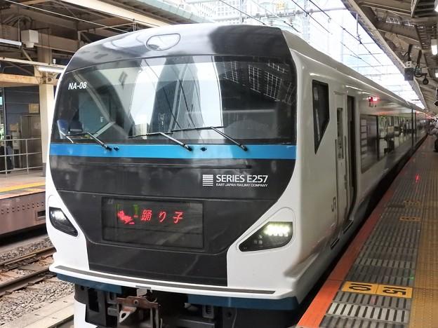 E257系特急踊り子号初乗車