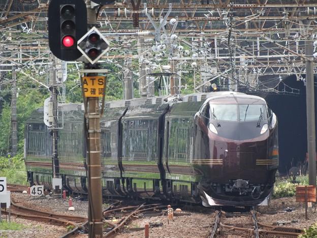 伊東線に向かうE655系「和(なごみ)」団臨