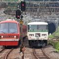 Photos: 185系特急踊り子9号と伊豆急リゾート21キンメ電車
