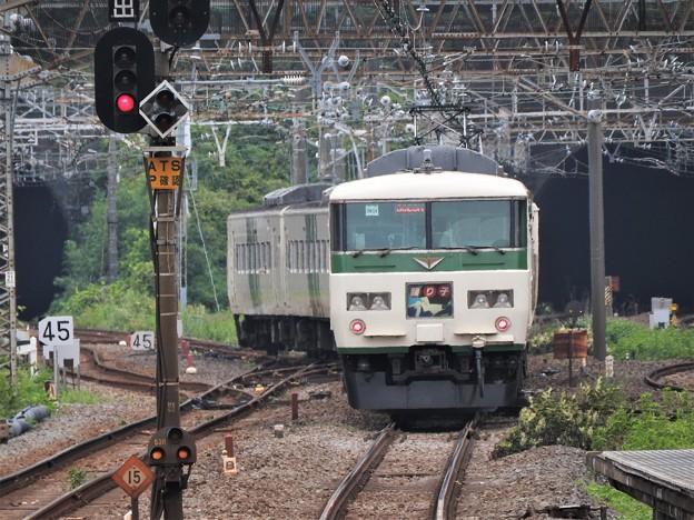 伊豆急下田に向かう185系特急踊り子9号