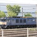 Photos: EF64 1022号機