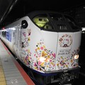 Photos: 特急はるか51号京都発関西空港行き
