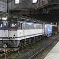 EF65 2117号機牽引4073レ小山11番待避中
