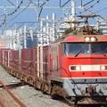 Photos: EF510-5号機牽引83レ
