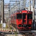 Photos: キハ185系特急ゆふ3号南福岡通過