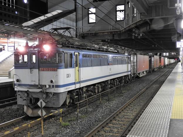 EF65 2075号機牽引4073レ小山11番待避中
