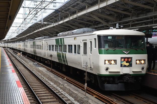 185系特急踊り子9号伊豆急下田・修善寺行き