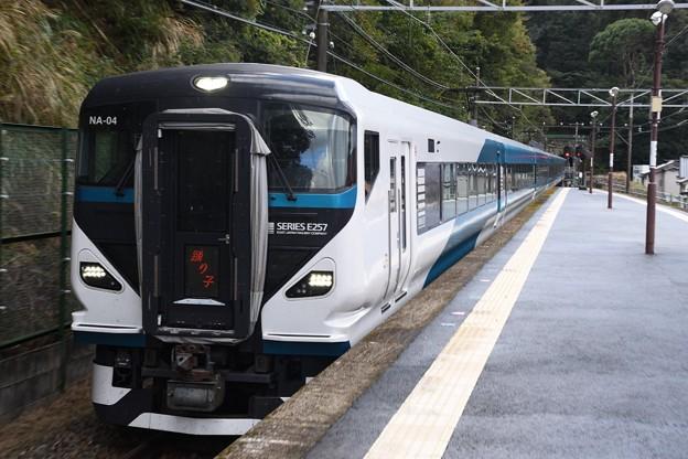 E257系2000番台特急踊り子号通過