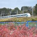 Photos: 秋色の東武日光線を行くスペーシア