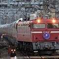 EF81 81号機牽引カシオペア紀行号大宮9番入線