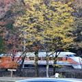 秋色のスペーシア