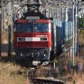 Photos: 金太郎74号機牽引大幅遅れのトヨタロングパスエクスプレス4074レ小山東3番臨時停車