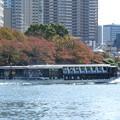 Photos: 秋色の隅田川を行くTOKYO CRUISEリバータウン