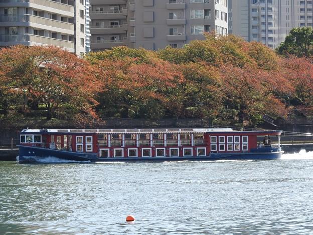 秋色の隅田川を行くTOKYO CRUISE竜馬
