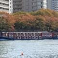 Photos: 秋色の隅田川を行くTOKYO CRUISE竜馬