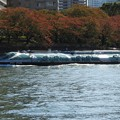 Photos: 秋色の隅田川を行くTOKYO CRUISEホタルナ