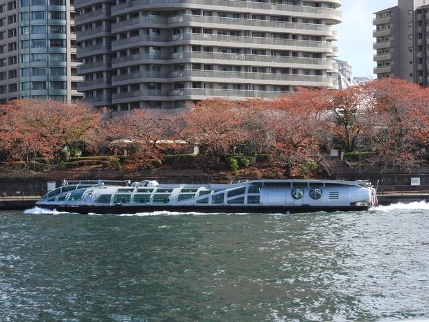 秋色の隅田川を行くTOKYO CRUISEエメラルダス