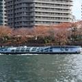 Photos: 秋色の隅田川を行くTOKYO CRUISEエメラルダス