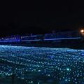 Photos: 青い灯りを行く重連夜汽車