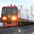 Photos: 両毛線を行く253系臨時快速足利イルミネーション号