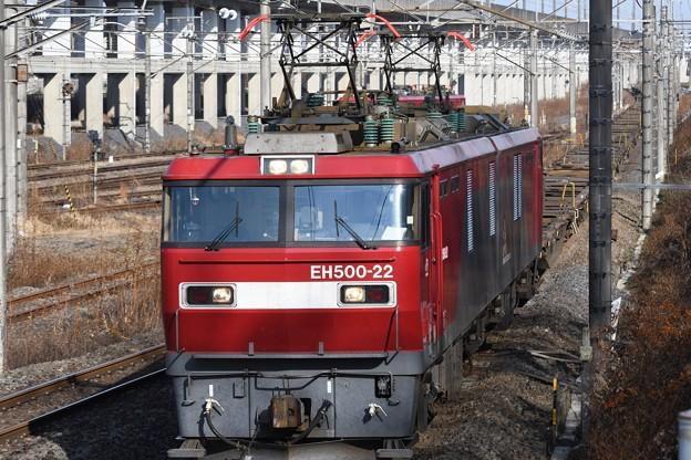 年末のEH500-22牽引3074レ空コキ20両