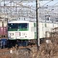 Photos: 185系臨時快速早春成田初詣号