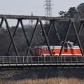 Photos: 両毛線思川橋梁を行くDE11 1041単機