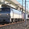 EF66 116号機牽引4093レ