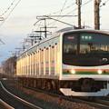 Photos: 夕陽色の宇都宮線205系