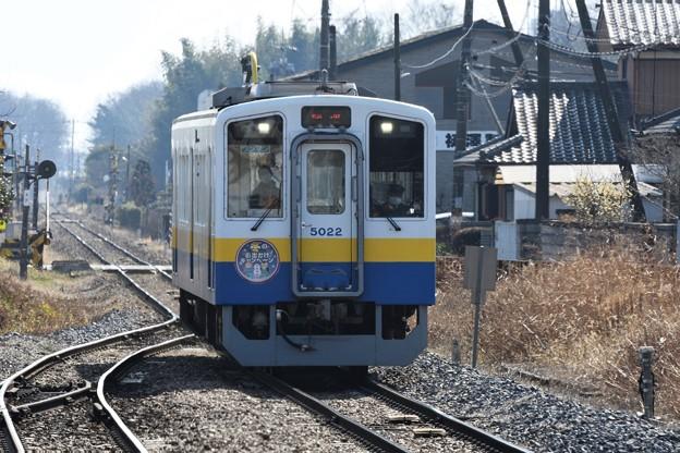 冬のお出掛けキャンペーンHM付きキハ5022
