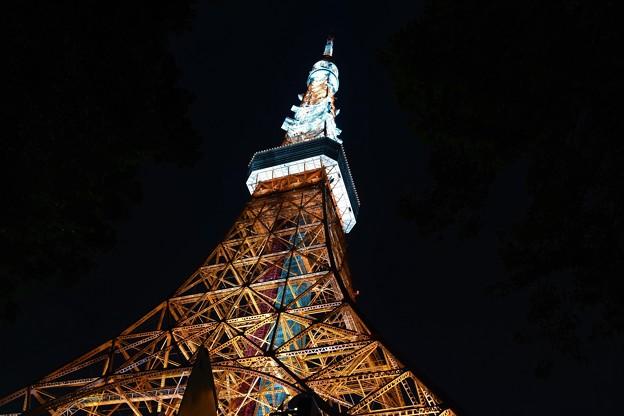 東京タワーを見上げる