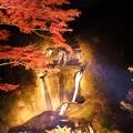 写真: 袋田の滝ライトアップ