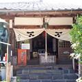 Photos: 2018.8.14(山口県/萩/円政寺)