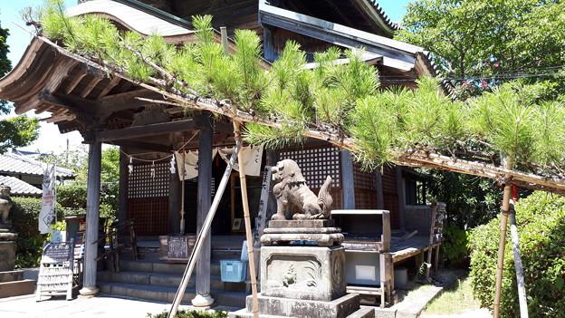 2018.8.14(山口県/萩/円政寺/お世継ぎ松)