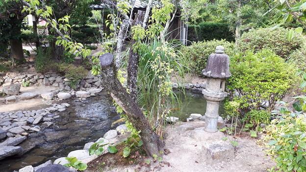 2018.8.14(山口/萩/旧湯川家屋敷-庭園2)