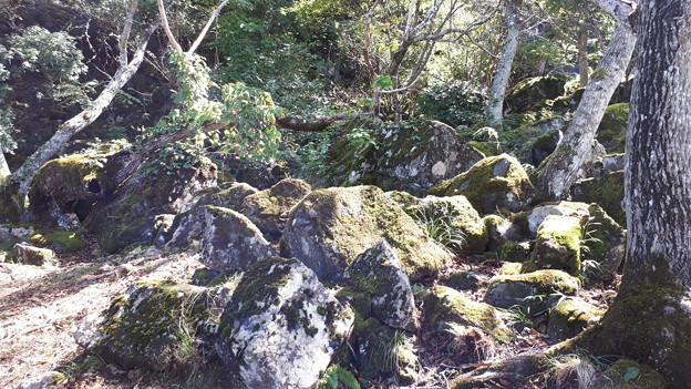 2018.10.8(兵庫/朝来市/立雲峡/奇岩周辺1)