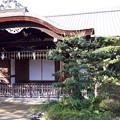 Photos: 2018.11.11(京都/左京区/平安神宮/東神苑-尚美館)