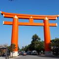 Photos: 2018.11.11(京都/左京区/平安神宮/鳥居)