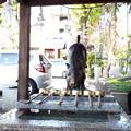 Photos: 2018.11.11(京都/上京区/護王神社/手水舎 幸運の霊猪2)