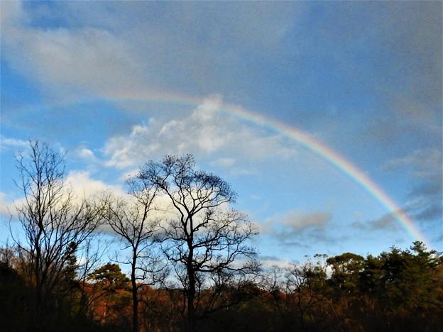 2020-12-03-rainbow01