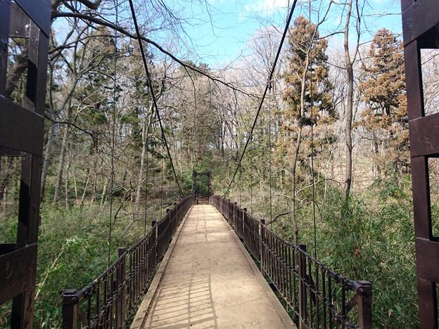 20180211-国営武蔵丘陵森林公園-あざみくぼ橋