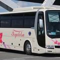 Photos: 豊鉄観光バス ハイデッカー「アゼリア」