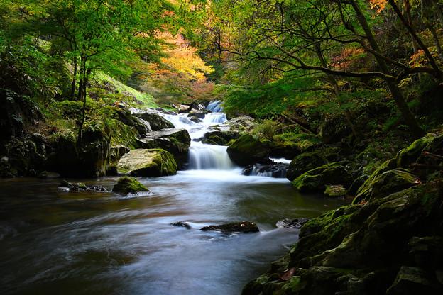 写真: 龍神の滝