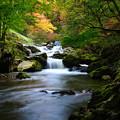 Photos: 龍神の滝