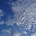 Photos: 高い空と低い空